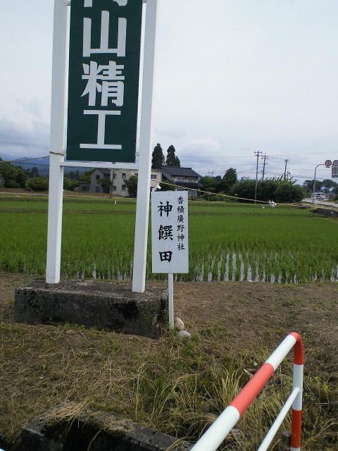 http://n-ko.jp/staffblog/SBCA0004.JPG