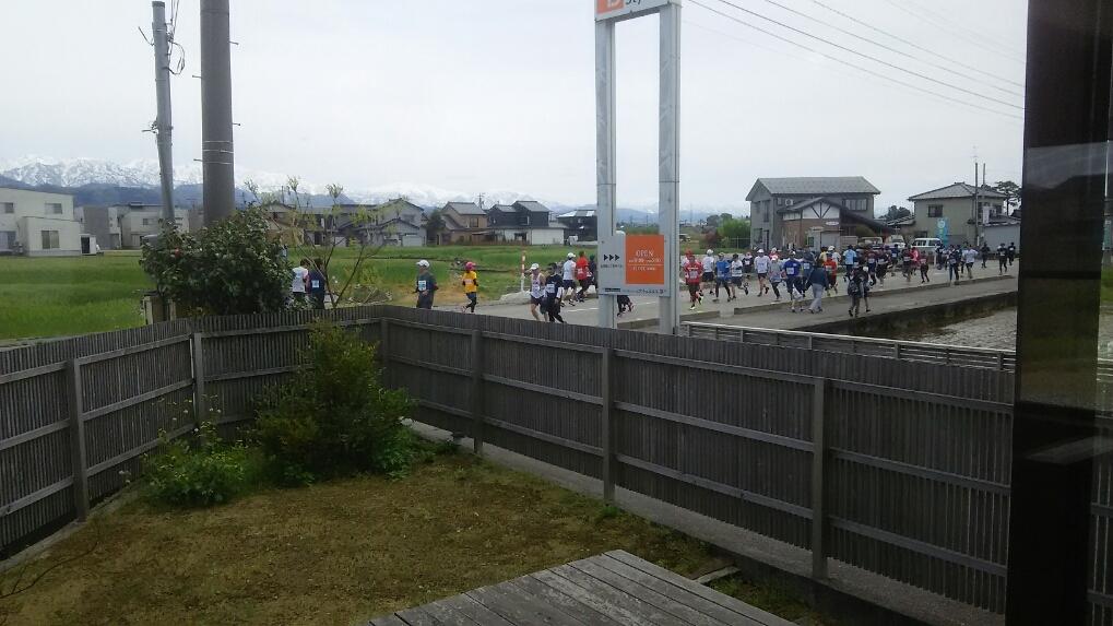 https://n-ko.jp/staffblog/DSC_1512.JPG