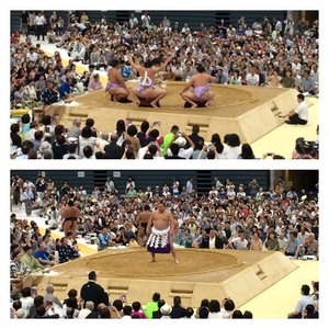 hn-sumo-2.jpg